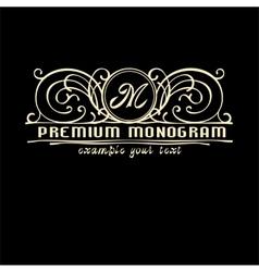 Stylish vintage graceful monogram vector
