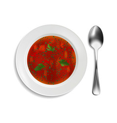 white porcelain plate with red soup and parsley on vector image
