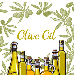 banner label with olive branches oil bottles vector image vector image