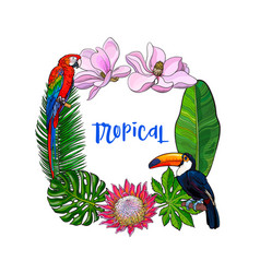 tropical palm leaves birds flowers square frame vector image vector image