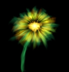 Abstract Glowing Flower Isolated on Black vector