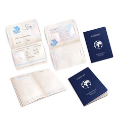 biometric passport mockups realistic set vector image