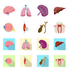 body and human sign set of vector image