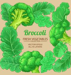 Broccoli plant frame on color background vector