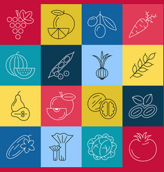 Digital green red blue yellow vegetable icons vector