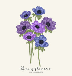 hand drawn spring flowers blue and violet vector image