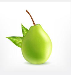 pear with green leaves vector image