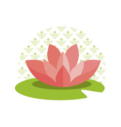 pink lotus on green leaf and circle with pattern vector image