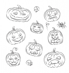 Pumpkins sketched vector