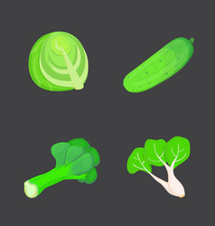 set of green vegetables collection fresh vector image