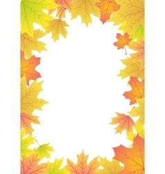 maple leaves frame vector image vector image