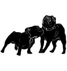 Bulldog dog pug vector image