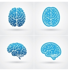 Four brain icons vector