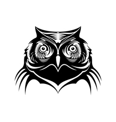 Head of a wise old owl vector