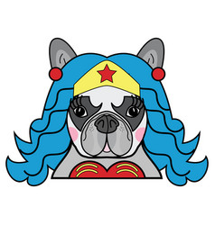 kids style cute superhero bulldog wonder woman vector image