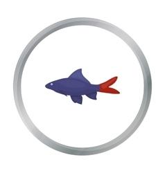 Red Tail Shark fish icon cartoon Singe aquarium vector