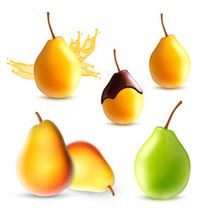 set of pear vector image