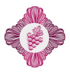 Grape fruit ornamental image vector