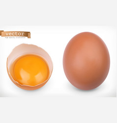 whole chicken egg and broken egg with yolk 3d vector image