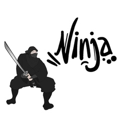 black ninja draw vector image