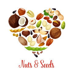 Heart with nuts seed bean for superfood design vector
