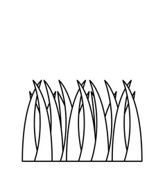 lawn grass plant icon image vector image