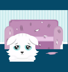 The cat spoiled the sofa sad cat flat vector