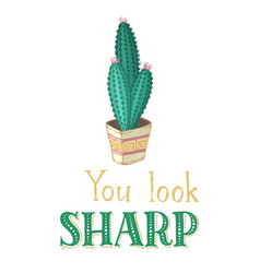 you look sharp card vector image