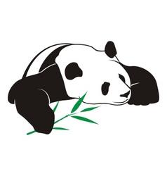 panda with bamboo logo vector image vector image