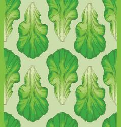 fresh green lettuce leaf pattern vector image