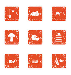 Horticultural style icons set grunge style vector