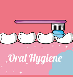 Oral hygiene brushing tooth and gum inside mouth vector