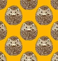 Sketch cute hedgehog in vintage style vector image
