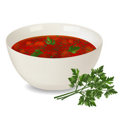 white porcelain bowl with red soup and parsley on vector image