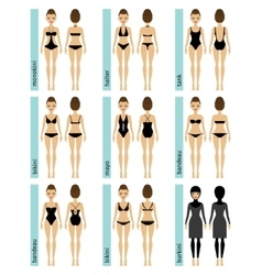 Womens swimsuit types vector
