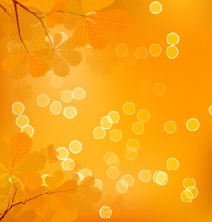 Chestnut Leaves of Autumn vector