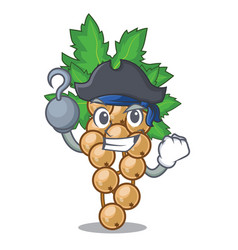 Pirate white currant isolated with the cartoons vector