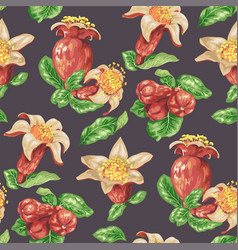 Seamless pattern with pomegranate fruits buds and vector