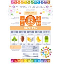 riboflavin vitamin b2 rich food icons healthy vector image