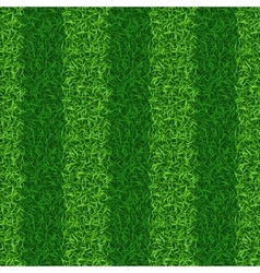 Striped green grass field seamless vector image vector image