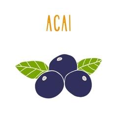 Acai berries vector