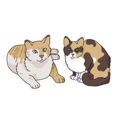Cute cartoon taband calico cat clipart vector
