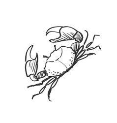 doodle crab vector image