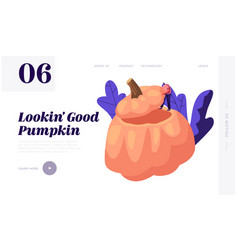 pumpkin dish website landing page tiny male vector image