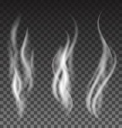 White smoke set on translucent background vector image vector image