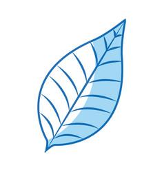 nature leave foliage botanical image vector image vector image