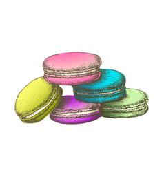 Color macaroon biscuit sweet dessert vintage vector