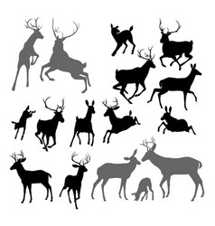 deer animal silhouettes vector image