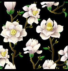 delicate seamless pattern with magnolia vector image