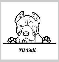 Dog head pit bull breed black and white vector